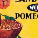 Sandstrom's Pomegranates-bh