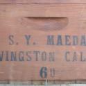 SYMaeda1960