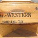 Cal-Western